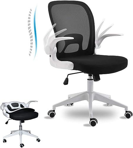 BINGTOO Home Office Desk Chair