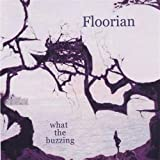 What the Buzzing by FLOORIAN (2004-12-08)