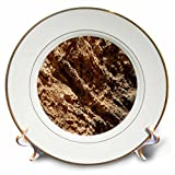 3dRose TDSwhite – Rock Photos - Natural Rock Formation - 8 inch Porcelain Plate (cp_281900_1)