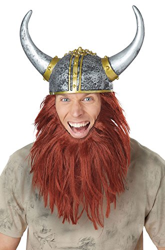 Mens Costumes Viking (California Costumes Men's Viking Getup, Silver/Auburn, One)