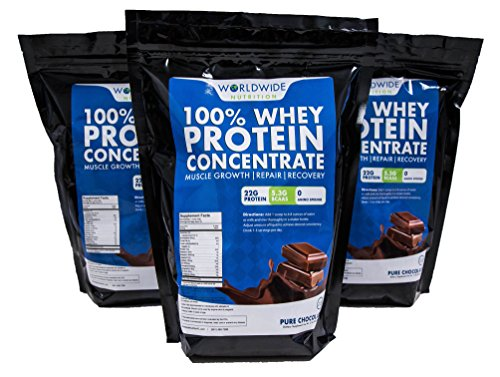 Worldwide Nutrition Whey Protein Chocolate Powder, Concentrate Supplement – 2lb Review