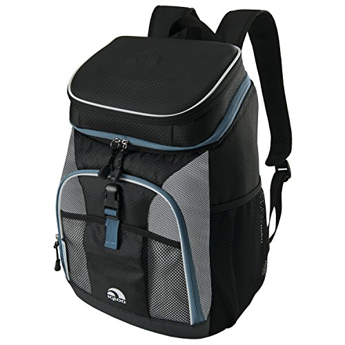 Buy ice chest backpack