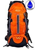 Cheap DURATON Hiking Backpack with Hydration Compatibility (50L) – Daypack With Rain Cover for Outdoor Backpacking Fishing Camping and Travel (Orange)