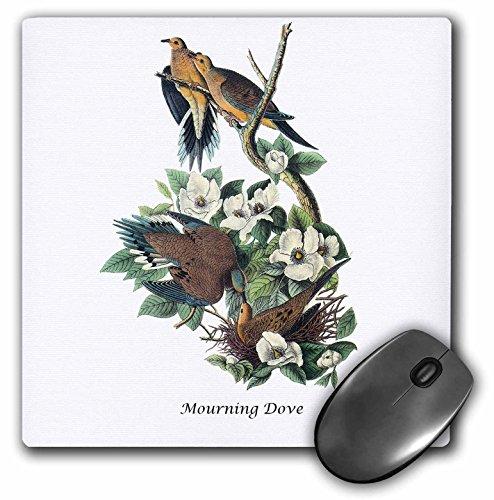 BLN John James Audubon Collection - Mourning Dove by John James Audubon - MousePad (mp_114067_1)