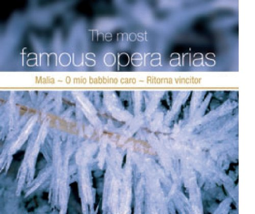 The Most Famous Opera Arias Vol.2 - Most Famous Opera Arias