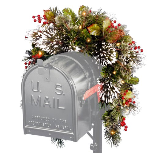 (National Tree 3 Foot Wintry Pine Collection Mailbox Swag with Cones, Red Berries, Snowflakes and 15 Battery Operated Soft White LED Lights (WP1-300-3MB-1))