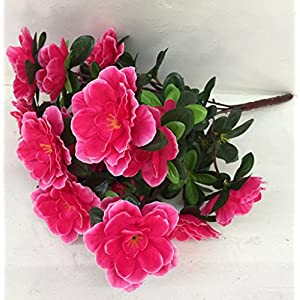 Skyseen 5PCS Artificial Azalea Flower Fake Rhododendron Simsii for Home Decoration,Rose 64