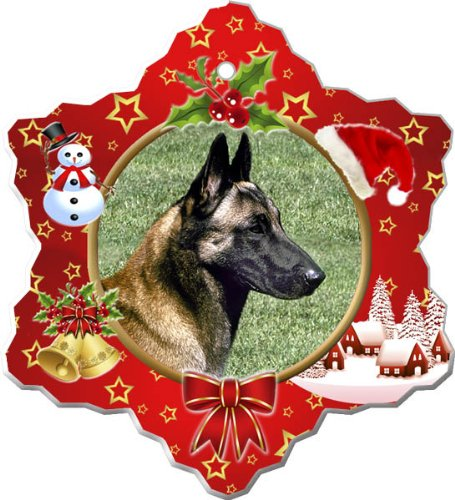 Canine Designs Belgian Malinois Porcelain Holiday Ornament