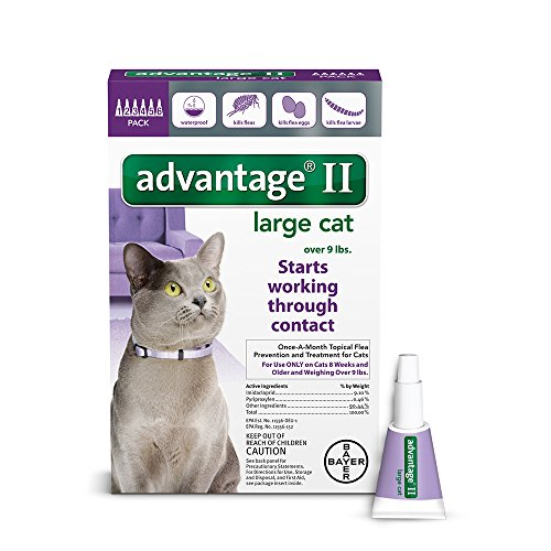 Bayer Advantage II for Large Cats Over 9 lbs, 6 Pack by Bayer Animal Health