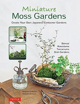 how to create moss bonsai