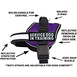 "Servcie Dog in Training Nylon Dog Vest Harness. Purchase Comes with 2 Reflective Service Dog in Training pathces. Please Measure Your Dog Before Ordering (Girth 24-31"", Purple)"