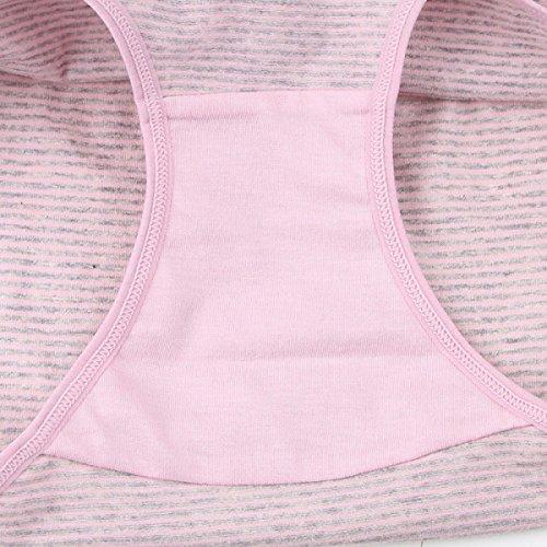 Cintura Media Chica Algodón Pajarita Raya Suave Antibacteriano Transpiración Bragas Bragas Pink