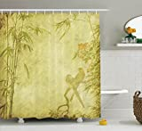 Bamboo House Decor Shower Curtain Set By Ambesonne, Silhouettes Of Birds On The Branch And Bamboo Stems Twig Retro Inspired Wild Life Theme, Bathroom Accessories, 69W X 70L Inches, Green