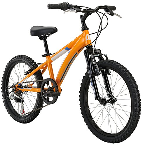 Cobra Dirt Bike (Diamondback Bicycles Cobra Kid's Mountain Bike, 20