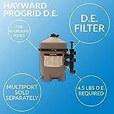 Hayward DE3620 ProGrid D.E. Pool Filter, 36