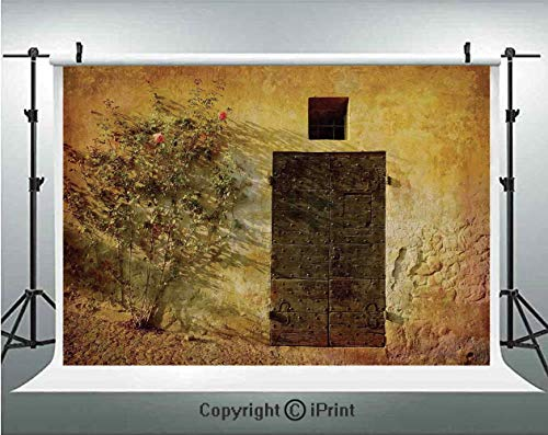 Italian Artistic Jewelry - Rustic Decor Photography Backdrops Historical Artistic Italian Door of Stone House Mediterranean Picturesque Heritage Photo,Birthday Party Background Customized Microfiber Photo Studio Props,5x3ft,Cre