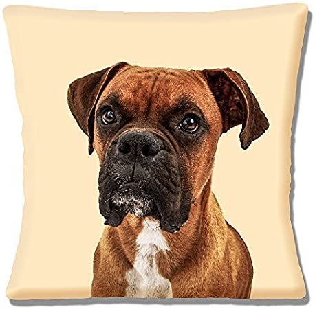"""NEW CHIHUAHUA BLACK DOG LARGE CLOSE UP OF HEAD PHOTO 16/"""" Pillow Cushion Cover"""