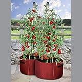 Tomaten Pflanztaschen 2er Set, Tildenet