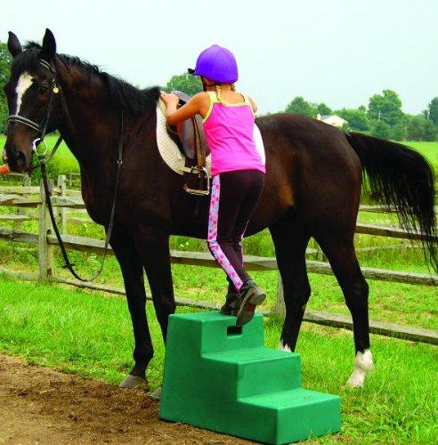 Purple Mounting Step 3 Step