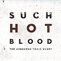 Photo of The Airborne Toxic Event