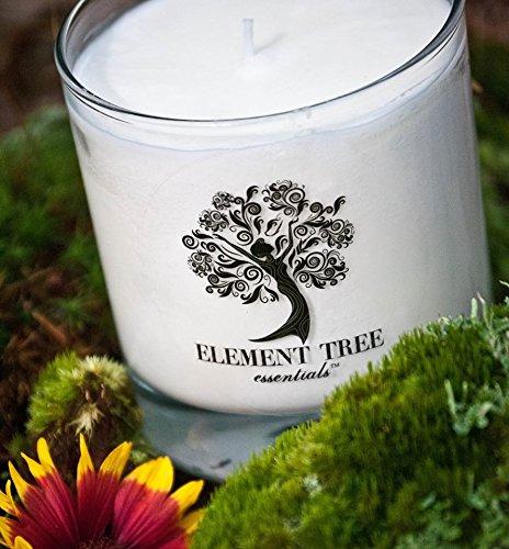 - Element Tree Essentials Lotion Candle (Vanilla Bean)