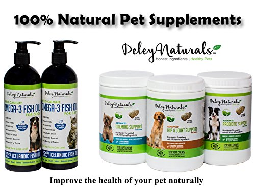 a good number of beneficial Probiotics for Dogs 6 Digestive Probiotics