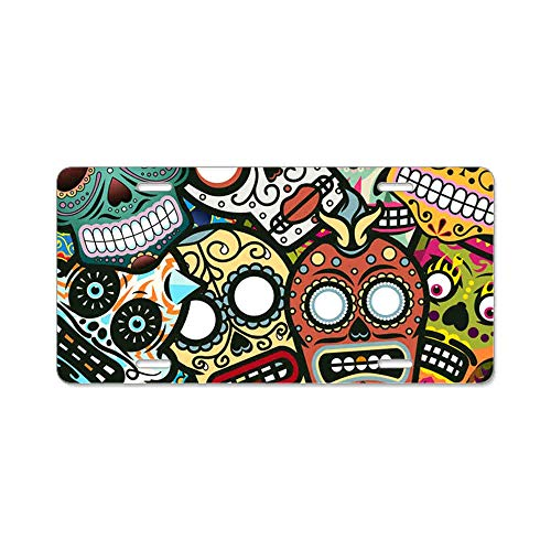 AhuiA-Mexican Skull Funky Artistic Gifts Custom Personalized Aluminum Metal Novelty License Plate Cover Front Auto Car Accessories Vanity Tag- 6x12 Inches]()