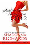 Accidentally Flirting with the CEO 2 (Whirlwind Romance Series)