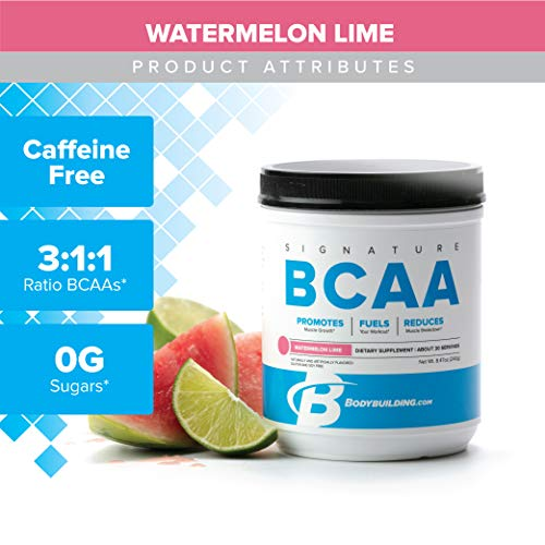 Bodybuilding Signature BCAA Powder | Essential Amino Acids | Nutrition Supplement | Promote Muscle Growth and Recovery | 30 Servings, Watermelon Lime