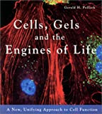 Cells, Gels and the Engines of Life