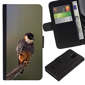 KingStore / Leather Etui en cuir / Samsung Galaxy S5 Mini, SM-G800 / Direction floue Nature Printemps