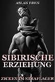 sibirische erziehung zicken im straflager dark romance german edition