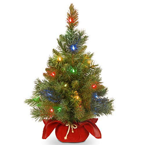 National Tree 24 Inch Majestic Fir Tree with 35 Battery Operated Multicolor LED Lights (MJ3-24BGRLO-B1) (Christmas Tree Tabletop Lighted)