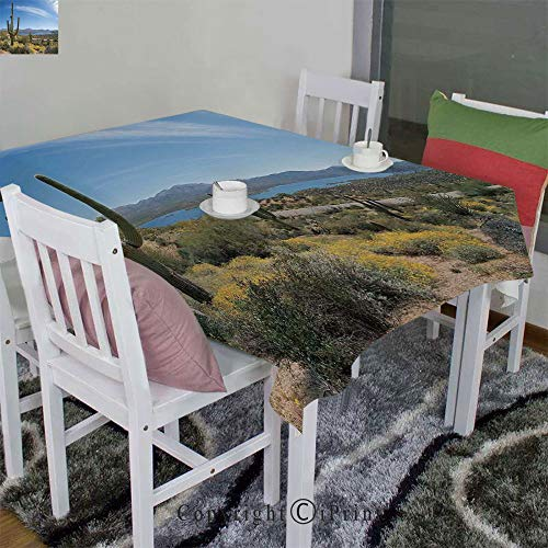 AngelSept Wrinkle Free Anti-Fading Tablecloth Velour Hemps by Big Cactus on The Valley Over Bartlett Lake in Desert Shallow Root Nature Image(60
