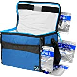 Arctic Zone Insulated Collapsible Travel Cooler Holds 12 Cans (4 Ice Packs Included)
