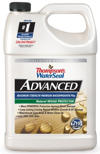Deck Sealer - Thompsons WaterSeal TH.A21711-16 Advanced Natural Wood Protector, gallon