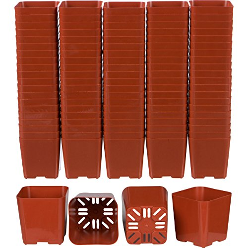 100 Pack of 2 Inch Square Plastic Flower Pots with Labels for Starting Seedlings, or Succulents (100, Terracotta) by WH Garden Supply