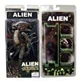 Shallen Aliens AVP 8in. Action Figure Alien Xenomorph Warrior The Brown NECA Reel Toys