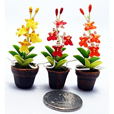 Dollhouse Flower Miniature Oncidium Orchids in Pots Set Made of Artificial Clay Realistic it Very Cute. (3 Pots) by Thai: Home & Kitchen