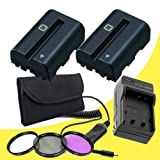 TWO NPFM500H Lithium Ion Replacement Batteries w/Charger + 3 Piece Filter Kit for Sony A65 A77 Alpha Digital SLR Cameras DavisMAX Accessory SLTA65 SLTA77 Bundle