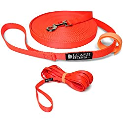 Leashboss Long Trainer - 50 Foot 3/4 Inch Lead - Nylon Dog Training Leash with Storage Strap - K9 Recall (50 Foot, 3/4, Orange)