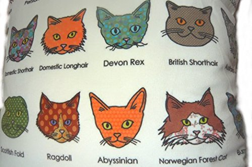 Cushion cover throw pillow case 18 inch cats kittens names breed