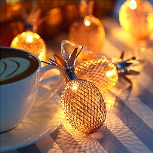 Best Led Christmas Lights For House