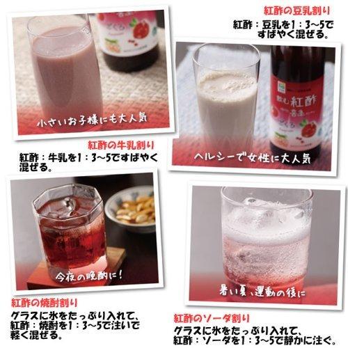 Venice (Honcho) pomegranate 900mlX2 Set of (drinking vinegar * Korea fruit vinegar) by Earthink (Image #2)
