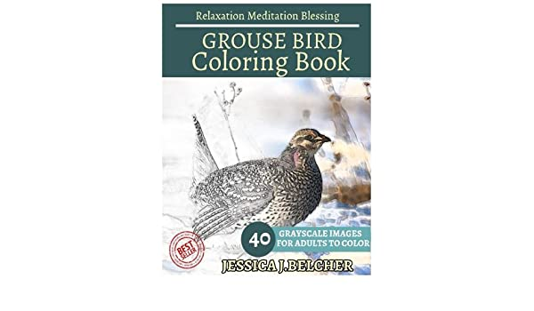 Amazon.com: GROUSE BIRD Coloring Book For Adults Relaxation Meditation  Blessing: Animal Coloring Book , Sketch Books , Relaxation Meditation ,  Adult ...