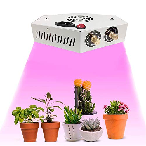 3W Cree Led Grow Light in US - 8