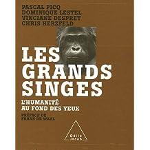 GRANDS SINGES (LES) : L'HUMANITÉ AU FOND DES YEUX