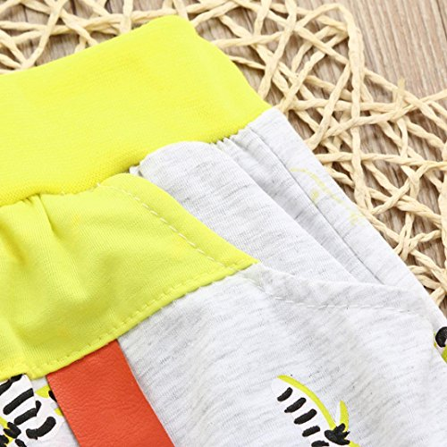 Ankola Children Summer Cartoon Zebra Print Shorts Toddler Kid Baby Boys Summer Casual Cotton Blend Shorts Pants with Pockets (Yellow, 6M) by Ankola (Image #4)