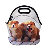 Ambielly Neoprene Lunch Bag/Lunch Box/Lunch Tote/Picnic Bags Insulated Cooler Travel Organizer (2 Dogs)