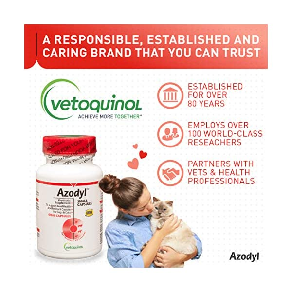 Vetoquinol Azodyl Kidney Health Supplement for Dogs & Cats, 90ct - Probiotic Pet Well-being - Help Support Kidney Function & Manage Renal Toxins - Renal Care Supplement - Easy-to-Swallow Small Caps 6